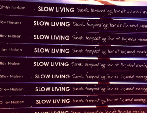 10 ting, jeg lærte af at skrive en bog om slow living