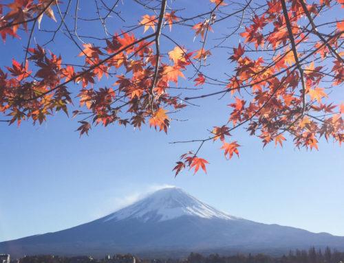 5 pointer fra Japonisme (Boganbefaling)